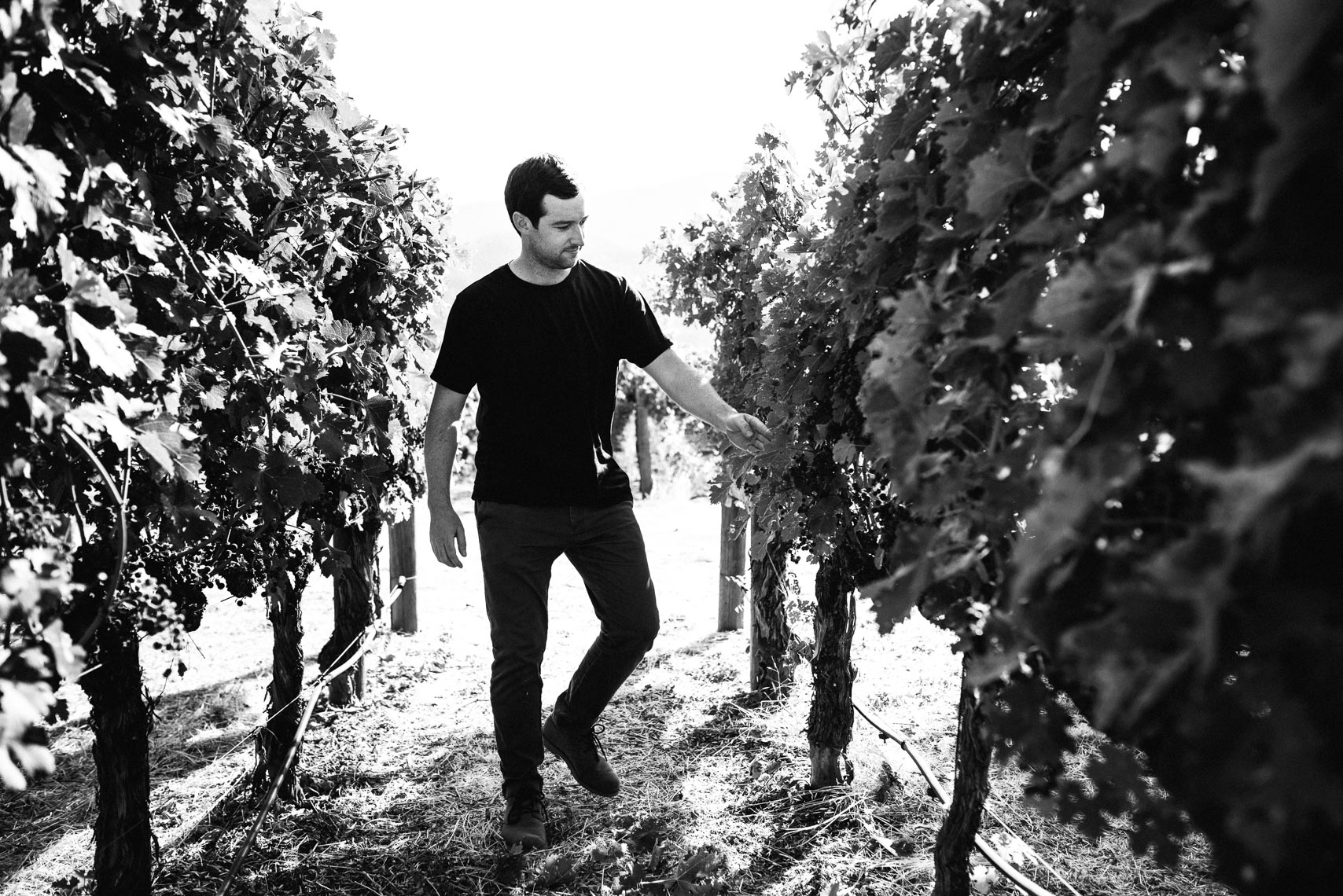 Colin Gordon //Bydand Wines